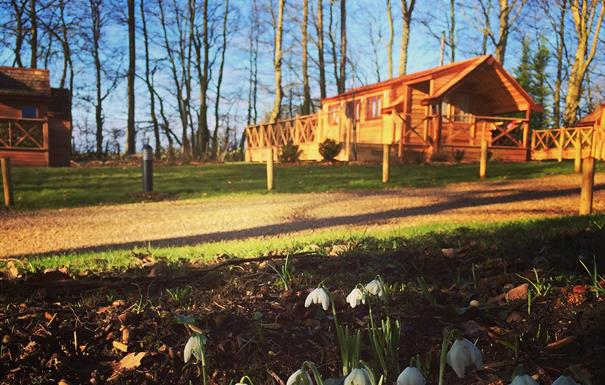 Mallory Meadows Lodges